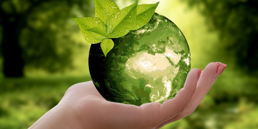 marchés publics insertion sociale et développement durable
